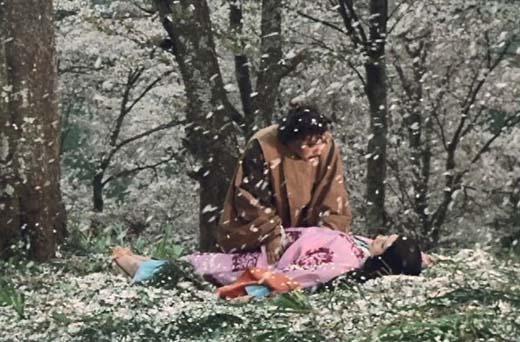 満開 下 森 の 桜の の